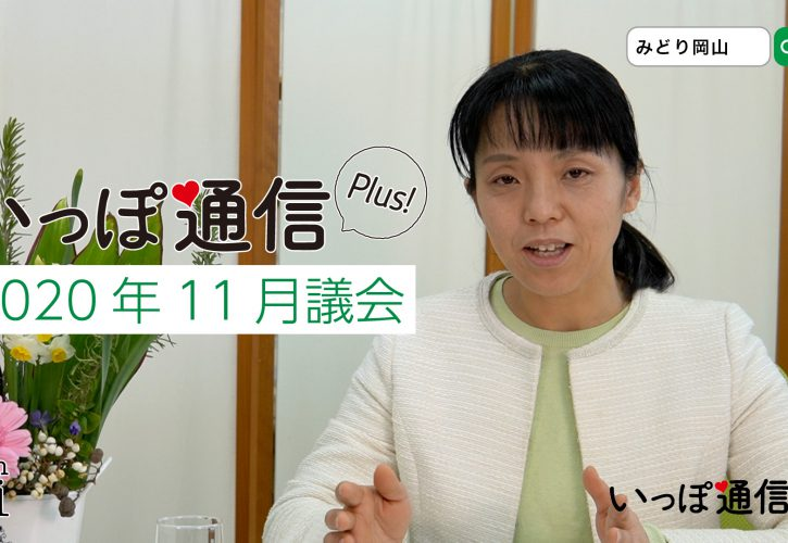 2020年11月議会|大塚愛